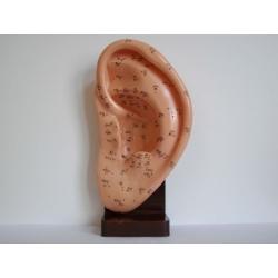 Demonstrációs fül