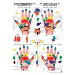 Fizioterápia VI.