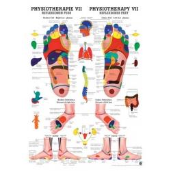 Fizioterápia VII.